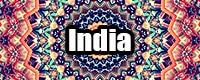 catpic_india